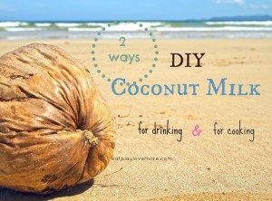 DIY coconut milk 2 ways (for cooking and drinking)