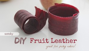 Sneaky DIY Fruit Leather - Great for picky eaters!