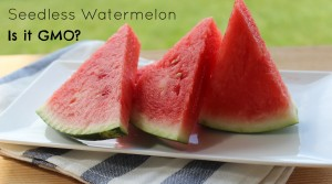 Seedless Watermelon - Are They GMO? A MUST Read