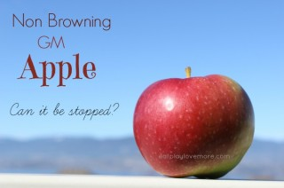 Non Browning GM Apple - Can it be stopped?