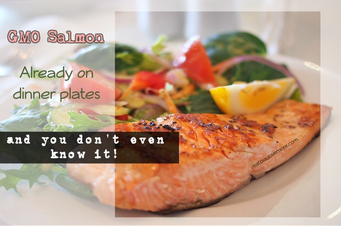 GMO Salmon - Already on dinnerplates and you don't even know it!